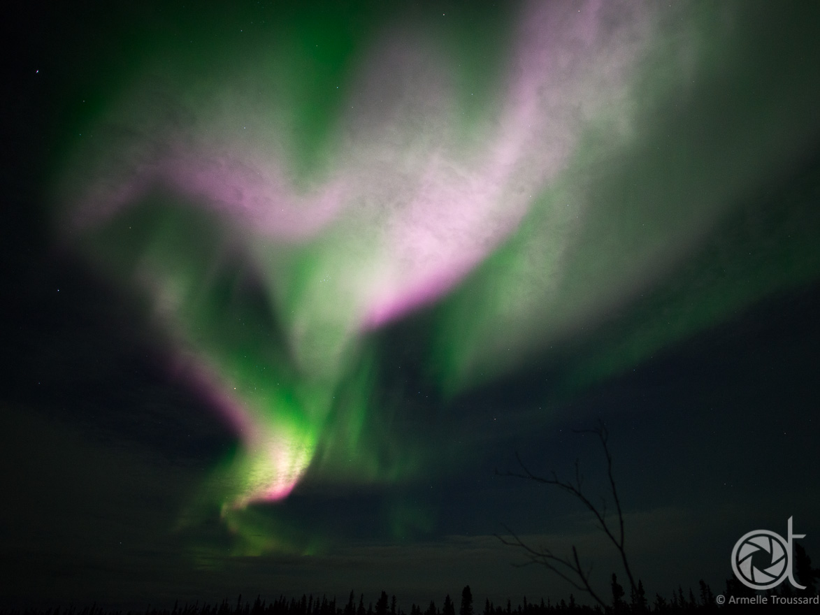 Northern lights - Prelude lake, Northwest Territories, Canada.