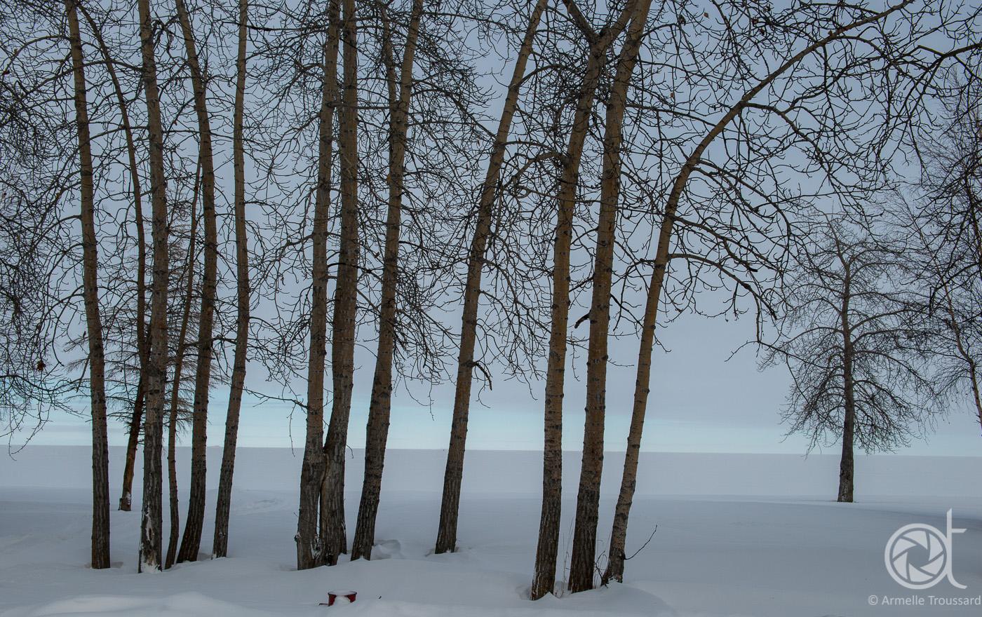Great Slave Lake Shore, Hay River, Northwest Territories