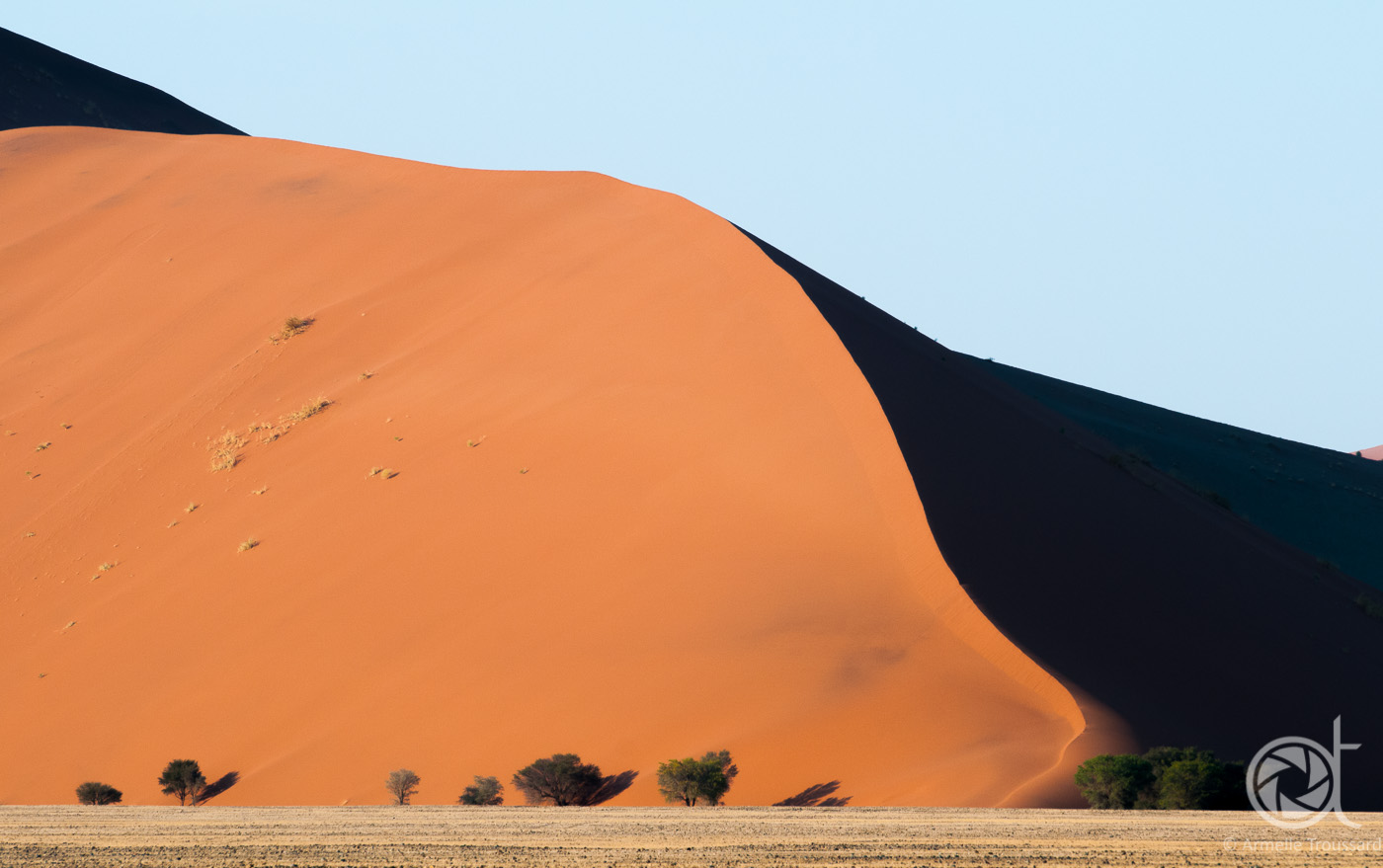 Red Dunes in early morning, Namib Sand Sea