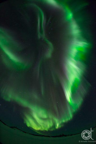 Aurora Angel (Vertical)
