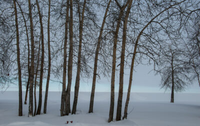 Great Slave Lake shore, Hay River
